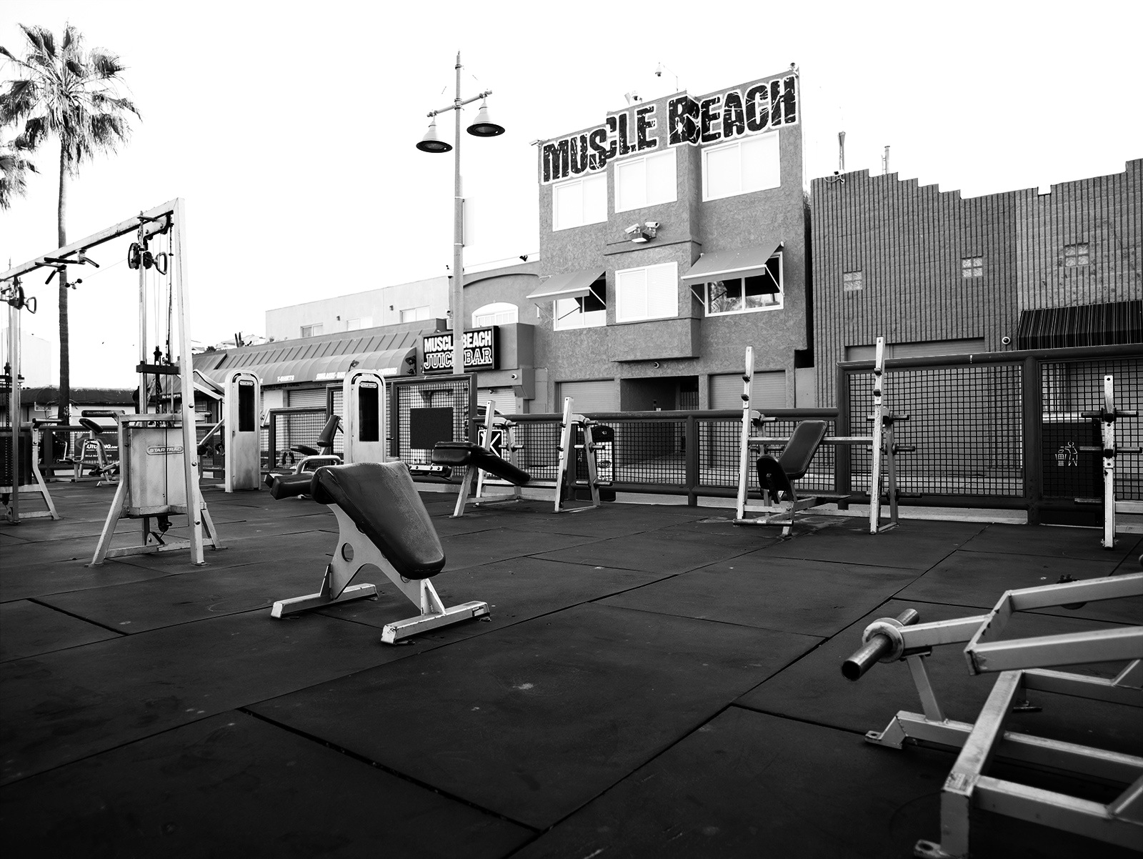 HylthLink Featured Gym | Muscle Beach