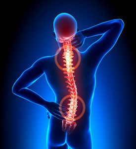 Back Pain Fix
