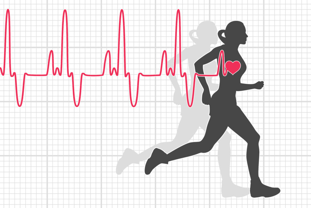 Heart Rate: All You Need To Know